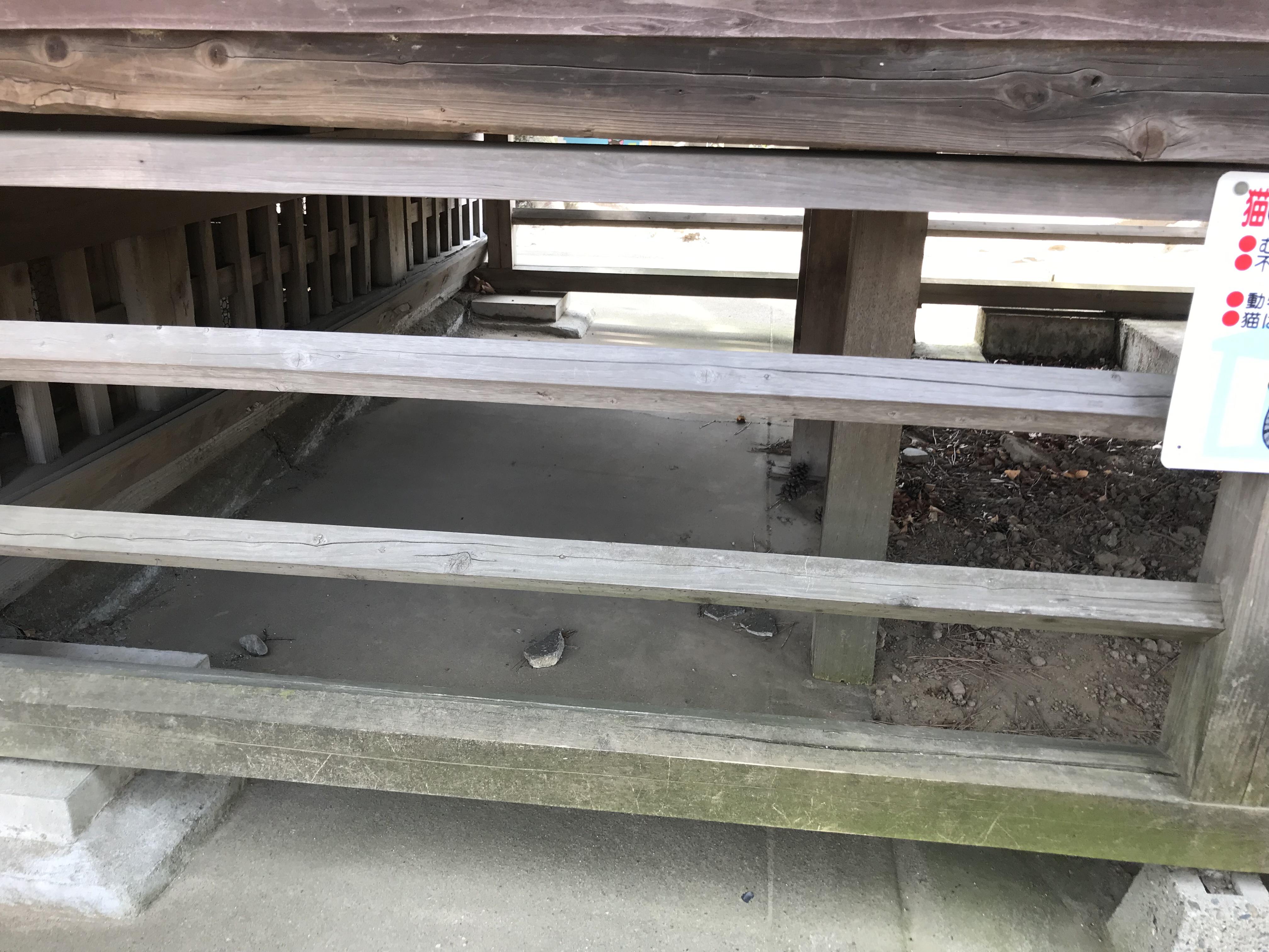 上小岩天祖神社の軒下 ルドルフとイッパイアッテナ 聖地巡礼